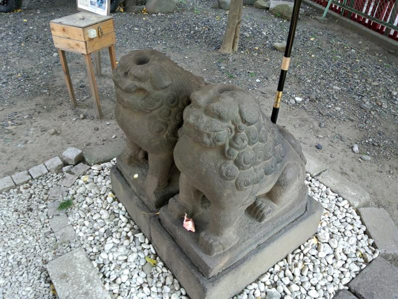 夫婦狛犬(浅草神社)
