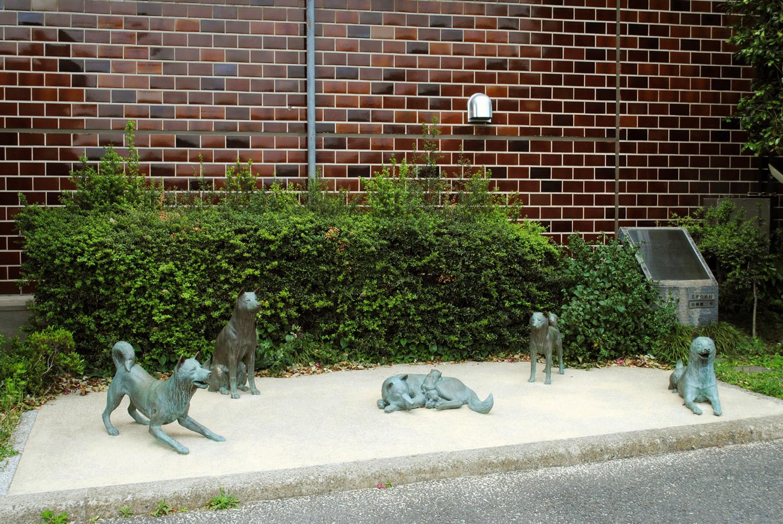 かこい 中野の犬屋敷跡