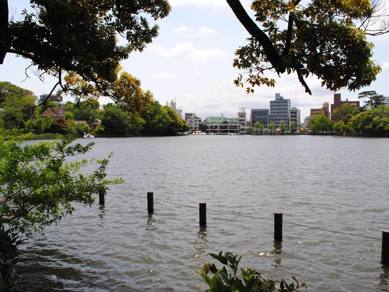 洗足池公園